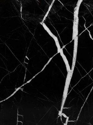 mẫu đá đen tia chớp