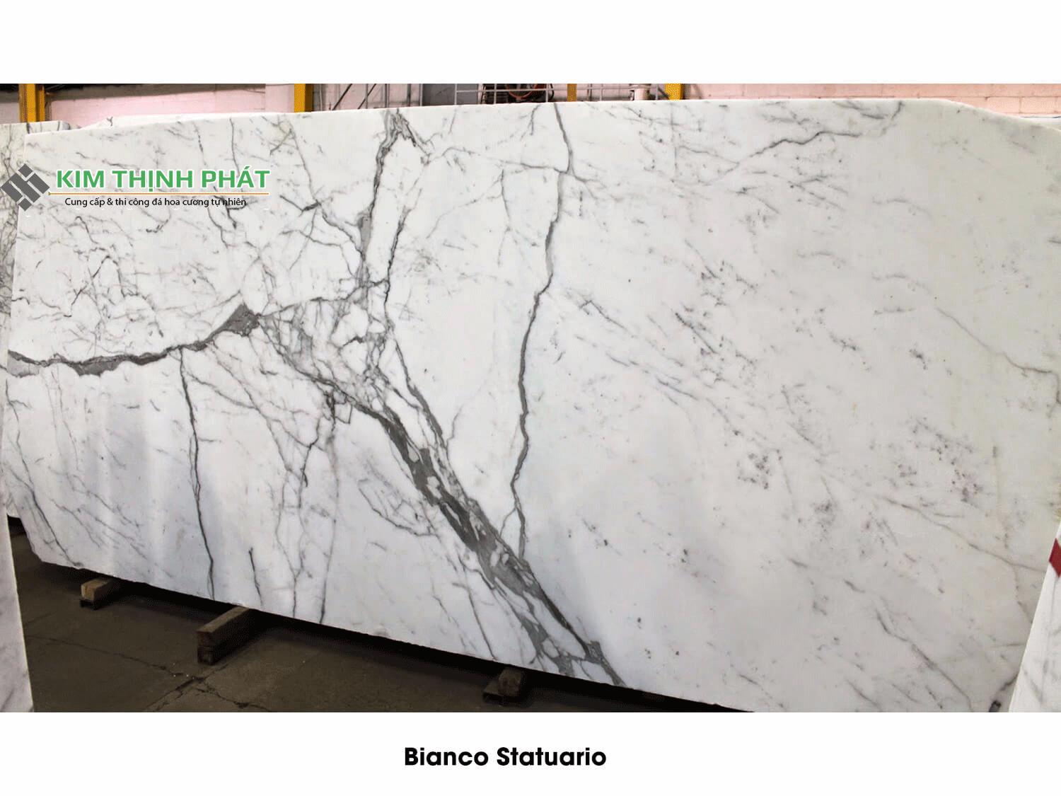 Carrara Marble White